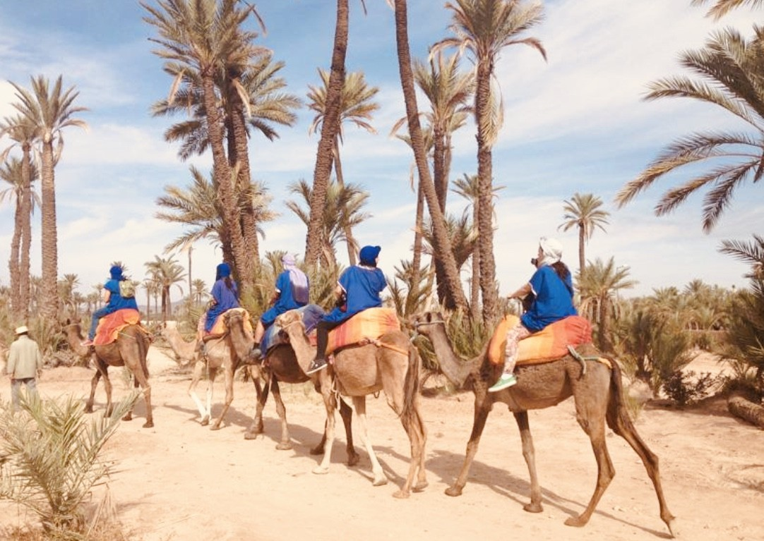 red city morocco tours